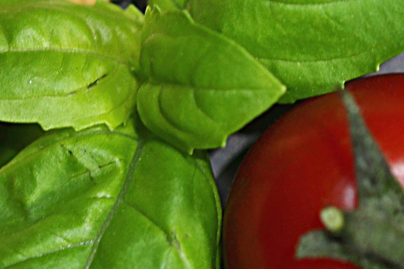 Basilikum mit Tomate