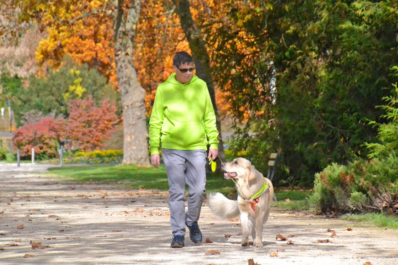 Ingrid und Sultan spazieren vor einem bunten Herbstbaum