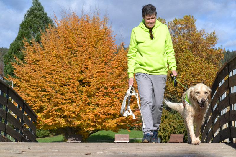 Ingrid und Sultan spazieren über eine Brücke, im Hintergrund ein gelber Herbstbaum