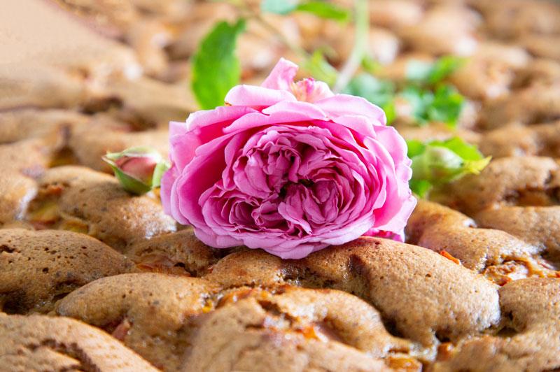 Rosenblüte auf Kuchen